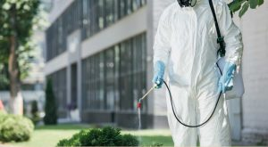 Commercial Pest Control and Bug Spraying Services in Enid