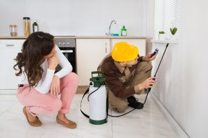 Home Residential Pest Control Services in Enid